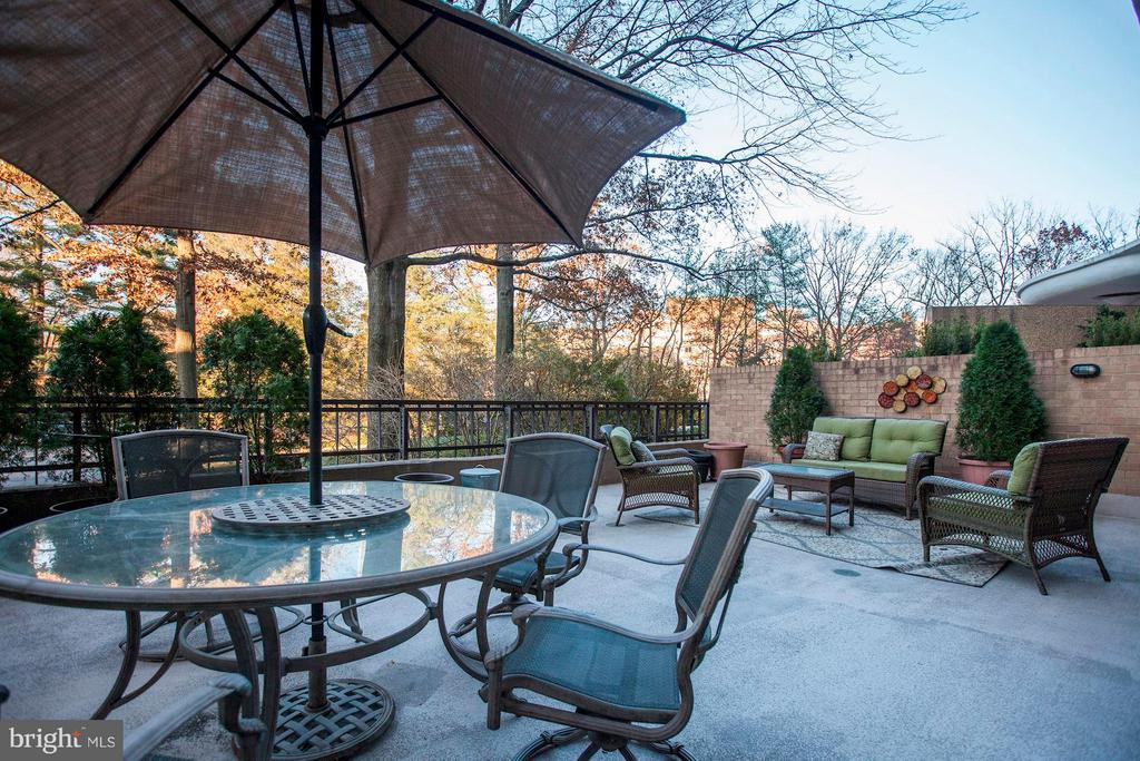 Huge Outdoor Terrace w/Suburban Feel - 4200 MASSACHUSETTS AVE NW #120, WASHINGTON