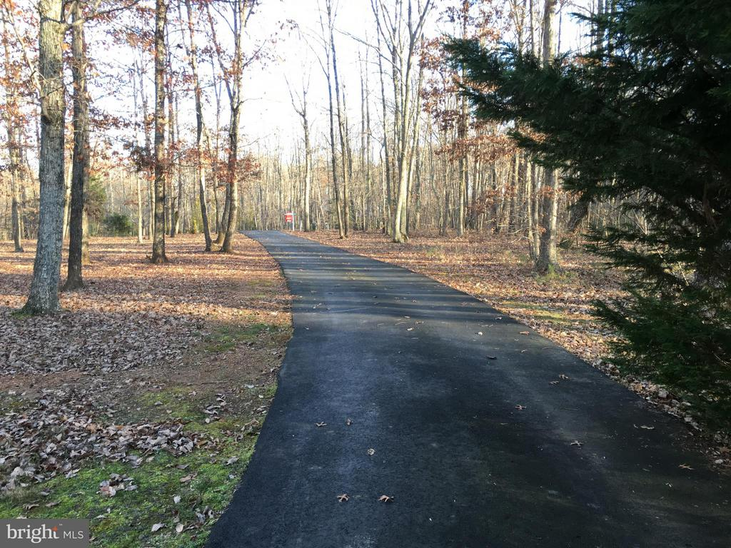 Scenic PRIVATE black top driveway to RESIDENCE.. - 6142 WALKER'S HOLLOW, LOCUST GROVE