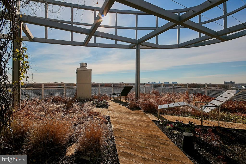 Community Rooftop - 3409 WILSON BLVD #801, ARLINGTON