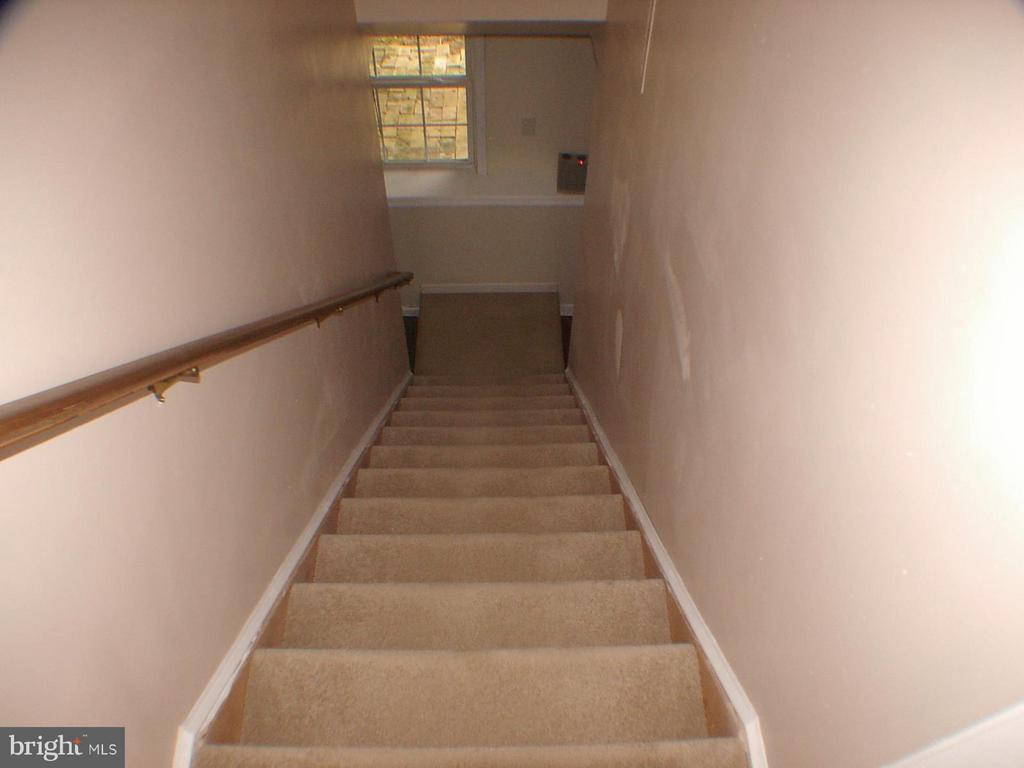 Carpeted stairway going down - 1919 WITHERS LARUE RD., BERRYVILLE