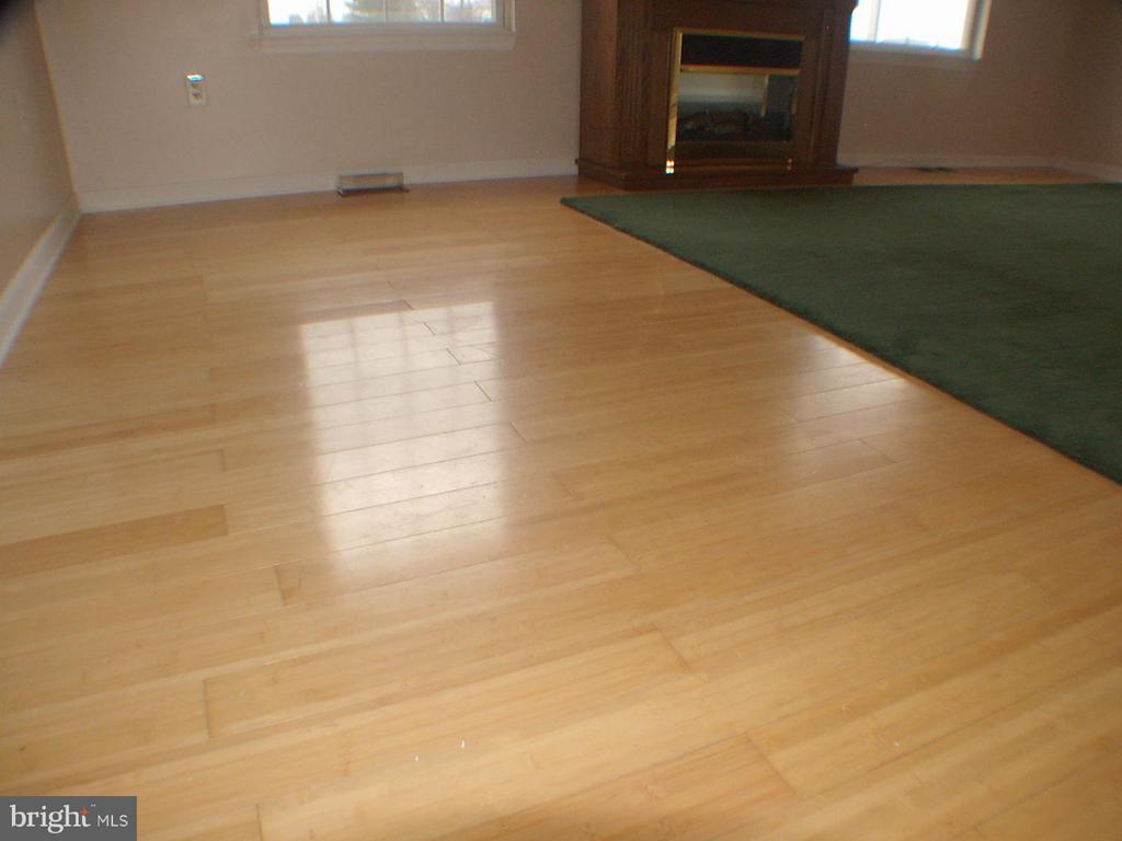 Bamboo flooring in living room, green rug - 1919 WITHERS LARUE RD., BERRYVILLE