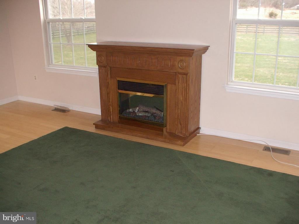 Electric fireplace conveys - 1919 WITHERS LARUE RD., BERRYVILLE