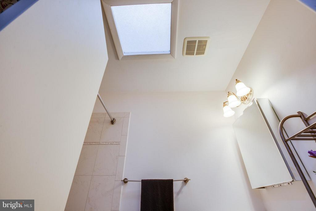Looking up at the Skylight in the hall bath - 6213 GARRETSON ST, BURKE