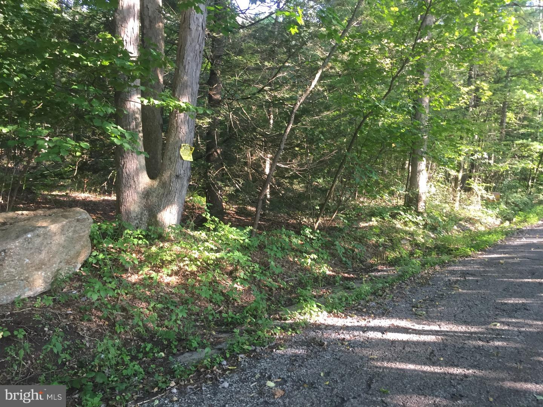 Terrain pour l Vente à Gordon, Pennsylvanie 17936 États-Unis