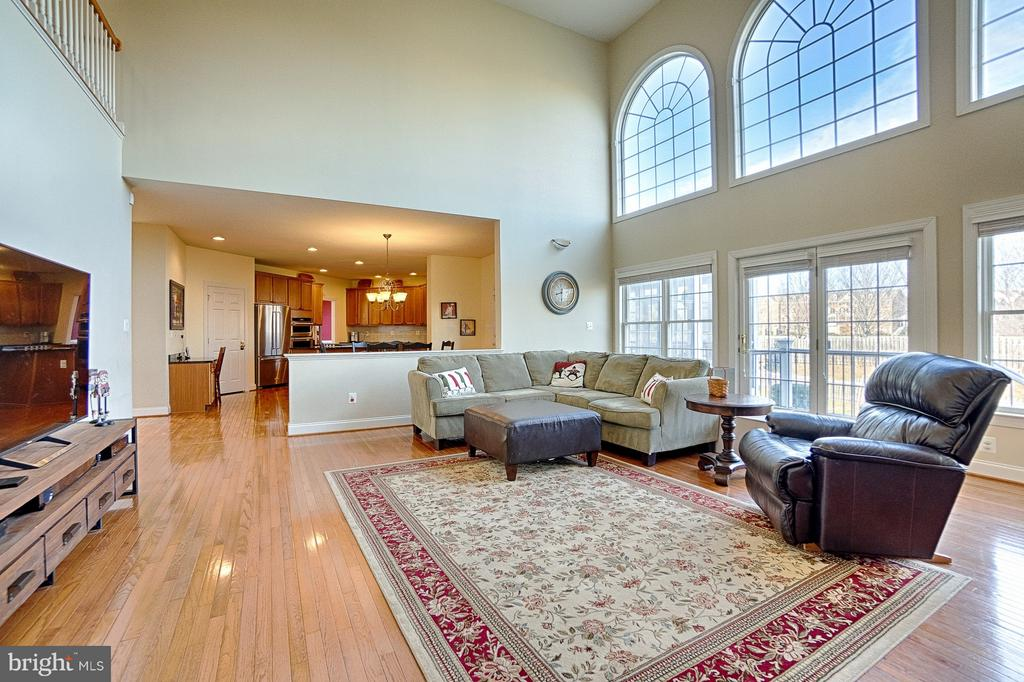 Grand family room feat. wood-burning fireplace - 43256 HARPER MANOR CT, ASHBURN