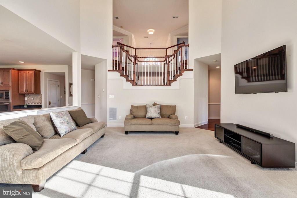Family Room w/ Open Views - 20290 KIAWAH ISLAND DR, ASHBURN