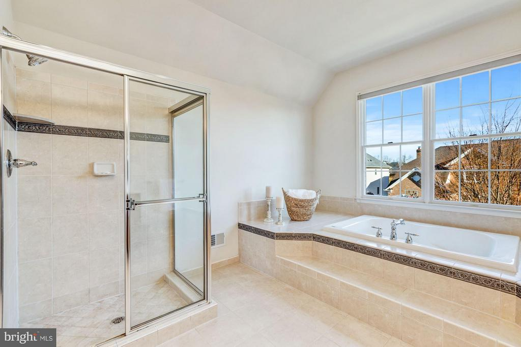 Sunlit Updated Master Bathroom - 20290 KIAWAH ISLAND DR, ASHBURN