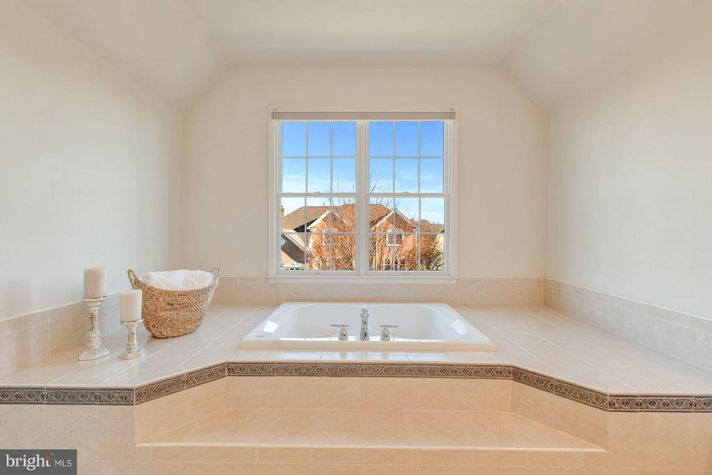 Luxurious  Soaking Tub - 20290 KIAWAH ISLAND DR, ASHBURN