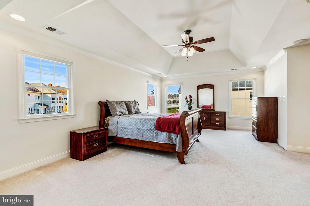 Master Bedroom w/ Tray Ceiling & Fan - 20290 KIAWAH ISLAND DR, ASHBURN