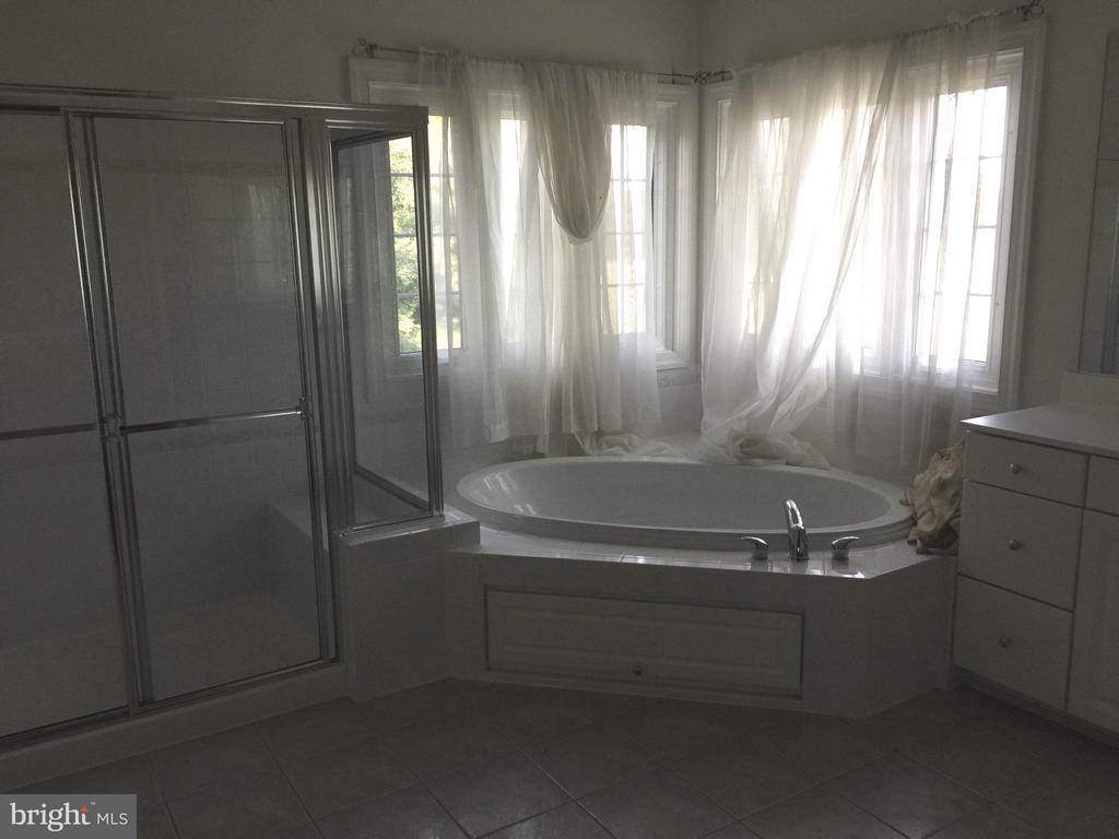 Bath (Master) - 22301 ESSEX VIEW DR, GAITHERSBURG