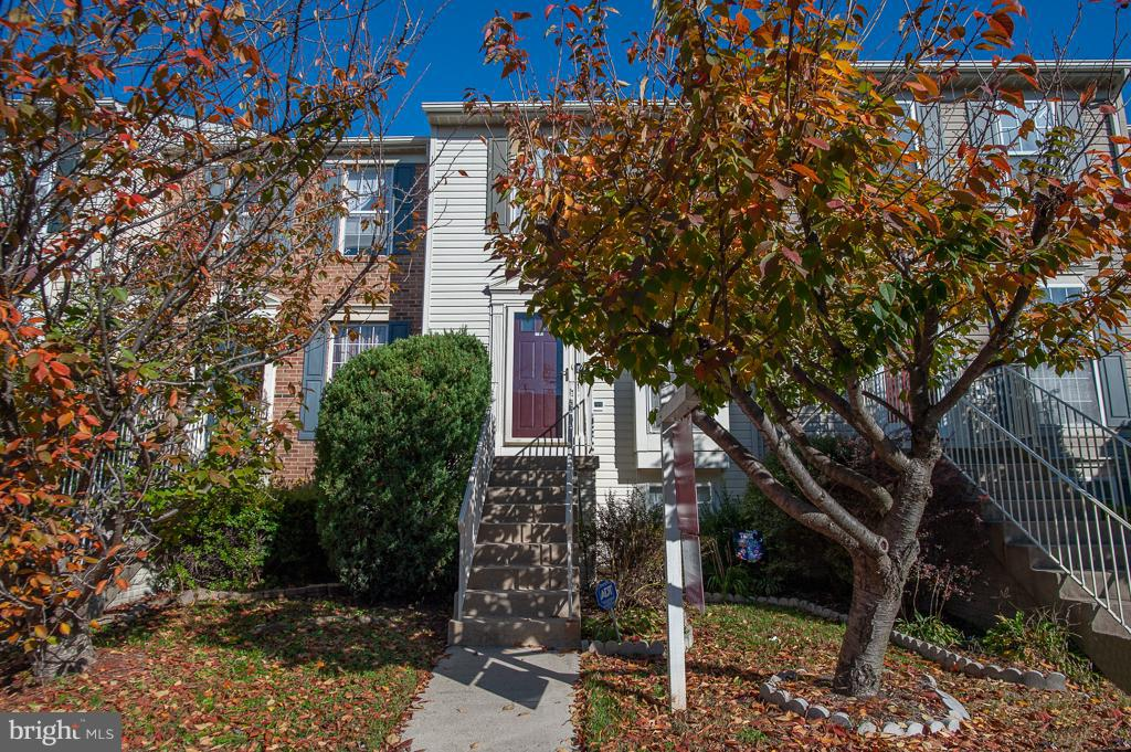 6374  MICHAEL ROBERT DRIVE, West Springfield, Virginia