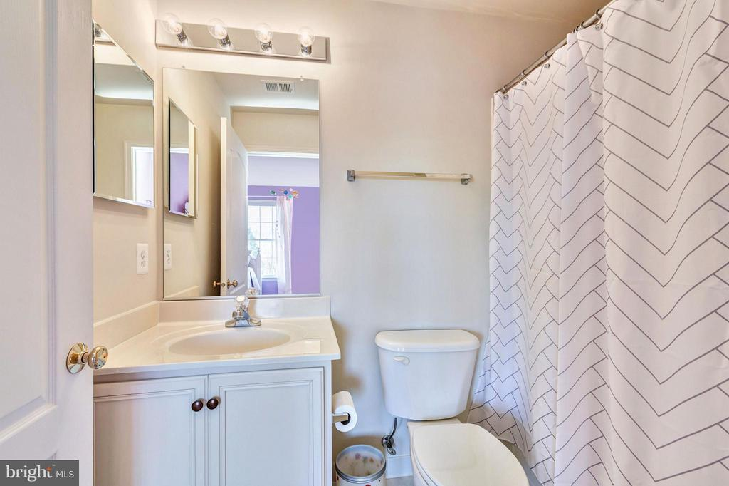 Princess Bathroom - 20290 KIAWAH ISLAND DR, ASHBURN