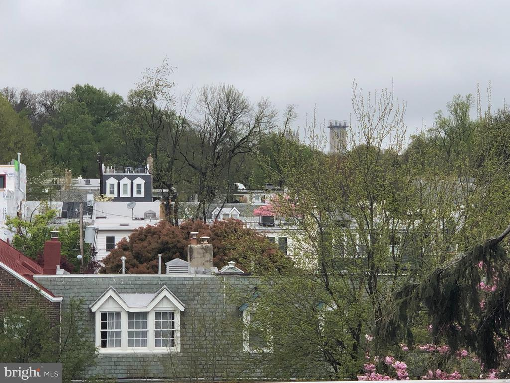 SWEEPING  ROOF TERRACE VIEW OF BURLEITH&CATHEDRAL - 3722 R ST NW, WASHINGTON
