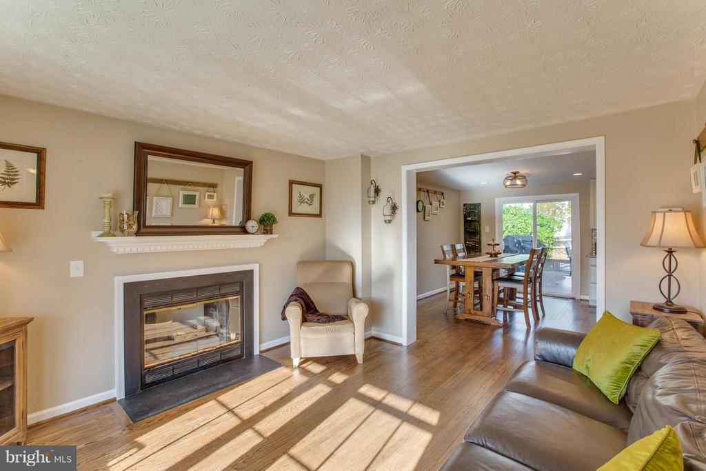 Living Room with a wood burning fireplace - 7427 KILCREGGAN TER, GAITHERSBURG