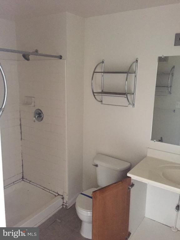 Main In-Suite Bath with Shower - 3030 IRMA CT, SUITLAND