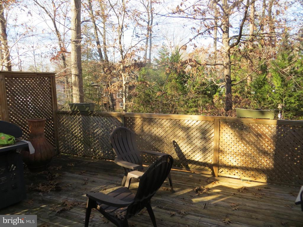Rear deck off Living Rm - 103 OAK CT, LOCUST GROVE