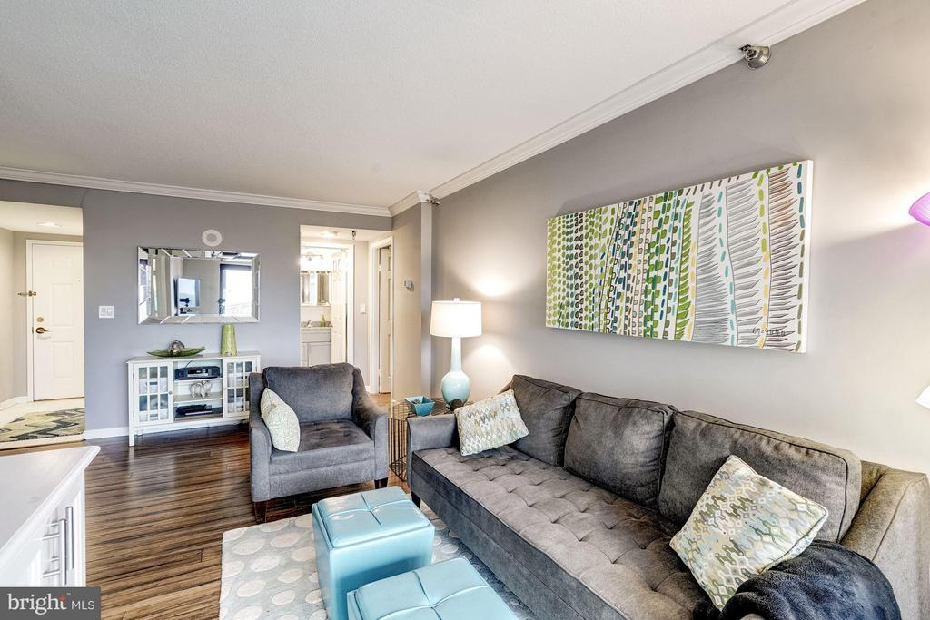Gorgeous living room - 2400 CLARENDON BLVD #816, ARLINGTON