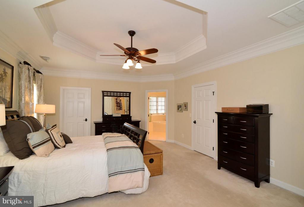 Beautiful tray ceilings in Master Bedroom - 21439 BASIL CT, BROADLANDS
