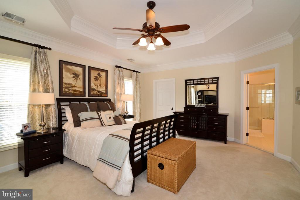 Warm Natural Lighting in Master Bedroom - 21439 BASIL CT, BROADLANDS