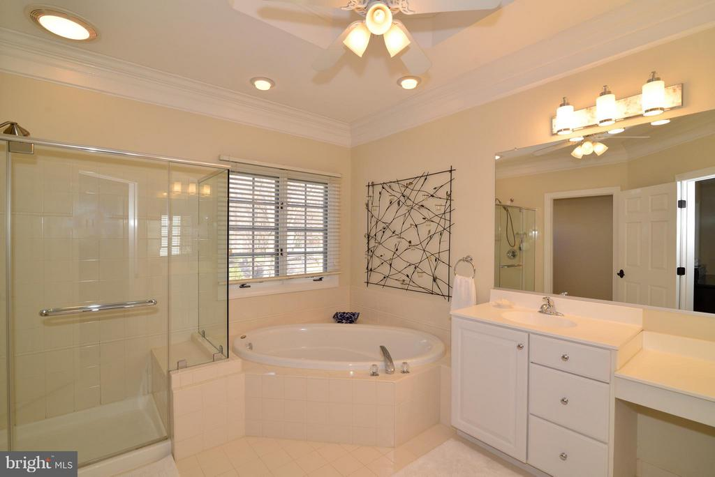Master Bath with Soaking Tub and Walk-in Shower - 21439 BASIL CT, BROADLANDS
