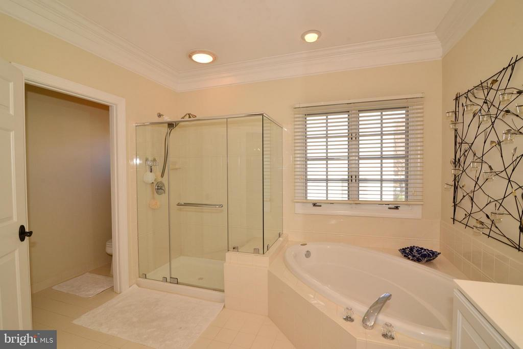 Water Closet and Linen Closet in Master Bath - 21439 BASIL CT, BROADLANDS