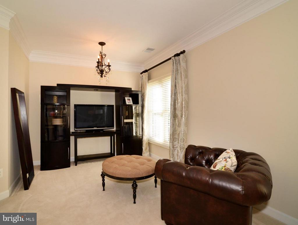 Bonus sitting area in Master Bedroom - 21439 BASIL CT, BROADLANDS