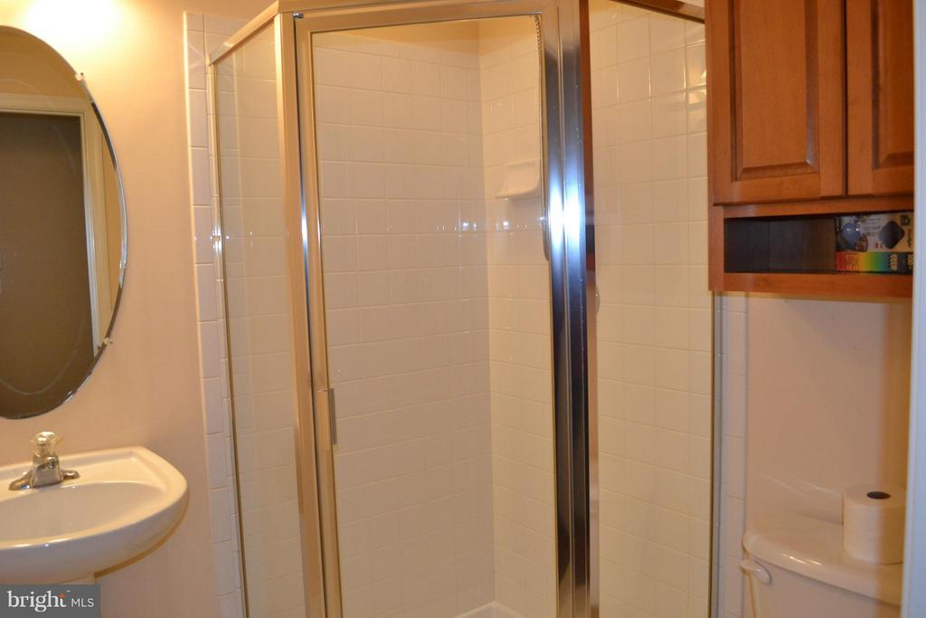 Full Bathroom in basement - 13439 WOOD LILLY LN, CENTREVILLE