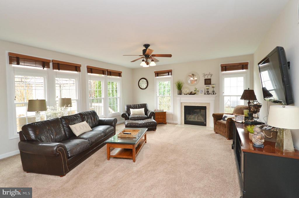 Sun Filled Family Room  with gas fireplace - 18490 ORCHID DR, LEESBURG