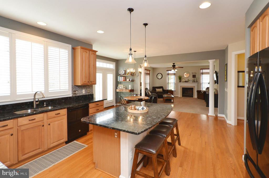 Kitchen has granite counters & update lighting - 18490 ORCHID DR, LEESBURG