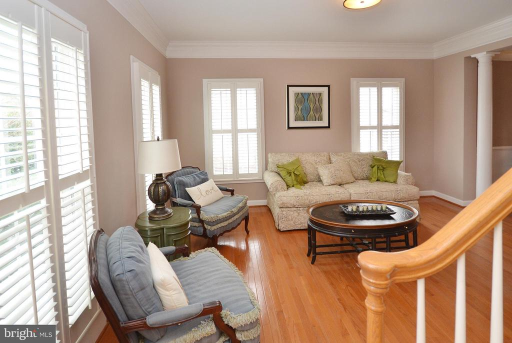 Living Room has plantation shutters - 18490 ORCHID DR, LEESBURG