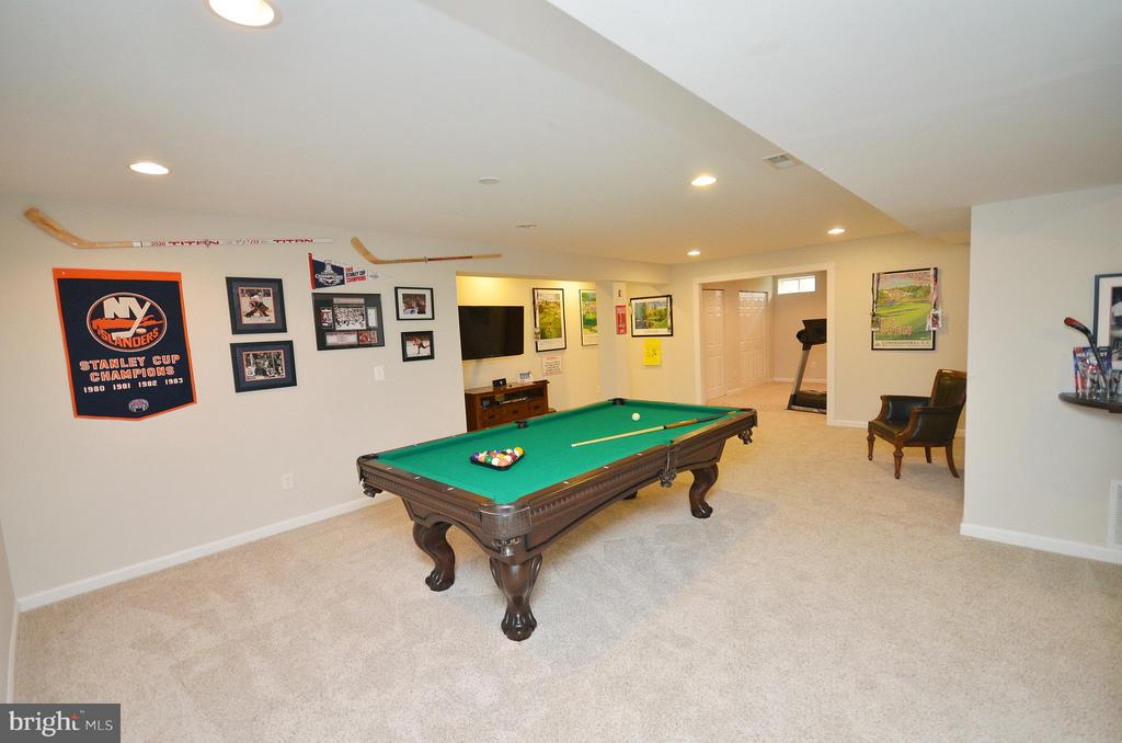 Lower Level Recreation Room - 18490 ORCHID DR, LEESBURG