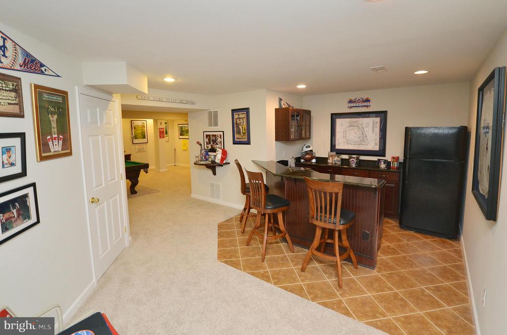 Bar Area & more storage space - 18490 ORCHID DR, LEESBURG