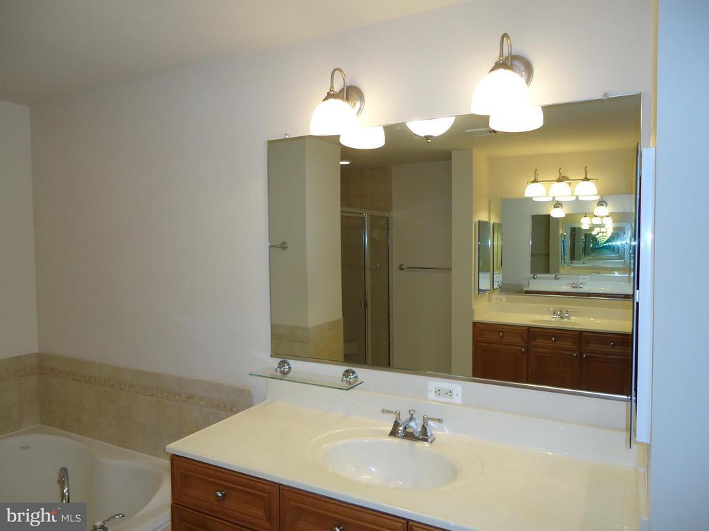 Master Bath Vanity # 2  Near Tub - 485 HARBOR SIDE ST #306, WOODBRIDGE