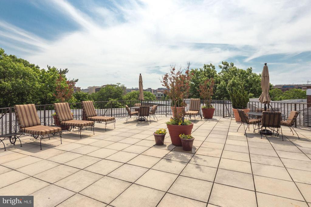 Roof deck ideal for lounging and hosting guests - 2500 Q ST NW #746, WASHINGTON