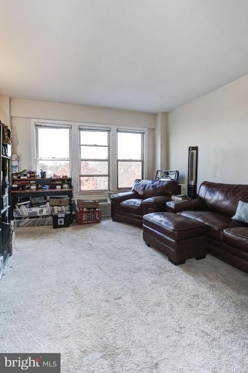 Studio Living with Ample Closet & Large Bath - 2500 Q ST NW #746, WASHINGTON