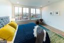 Master Bedroom- wall of windows - 1245 PIERCE ST N #8, ARLINGTON