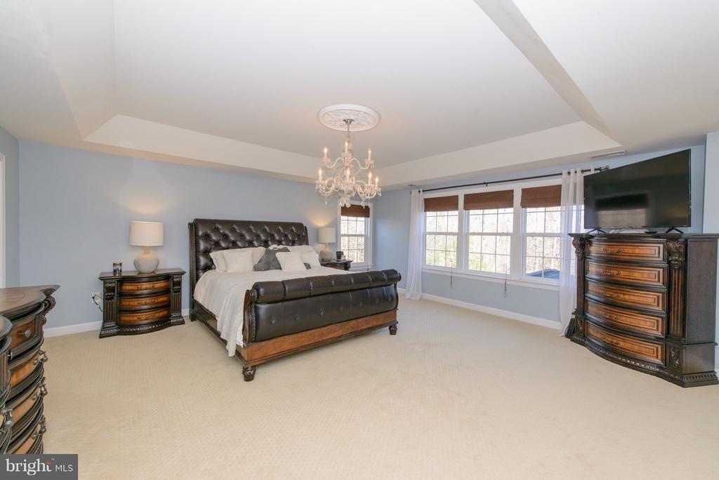 Master Bedroom Suite - 130 BRITTANY MANOR WAY, STAFFORD
