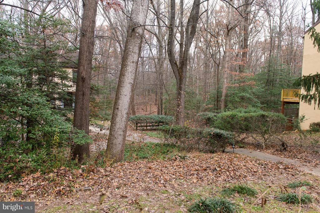 Front entrance view, looks out to Nature  Preserve - 2358 SOFT WIND CT, RESTON