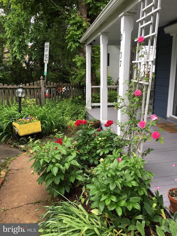 Front Porch Springtime - 3837 ALBEMARLE ST NW, WASHINGTON