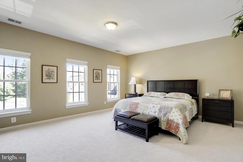 Second Master Sized Bedroom - 43613 CARRADOC FARM TER, LEESBURG