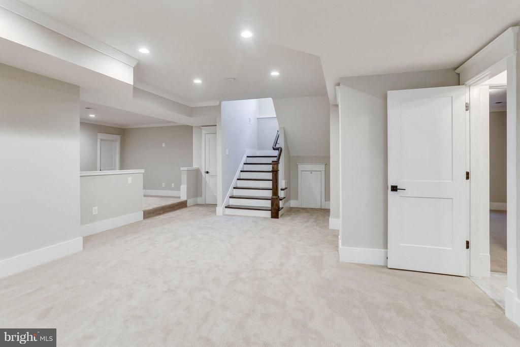 Recreation Room with Ample Storage, too - 6713 19TH ST N, ARLINGTON