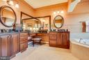 Custom Mirrors, High Level Cabinetry, Jetted Bath. - 10 STEFANIGA FARMS DR, STAFFORD