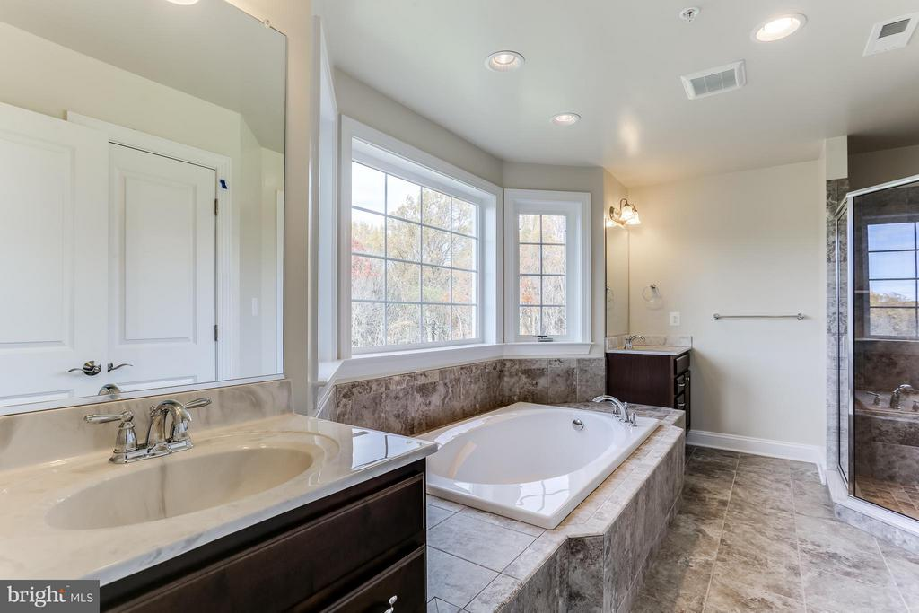 Master Bath Room - 7831 HARRIET TUBMAN LN, COLUMBIA