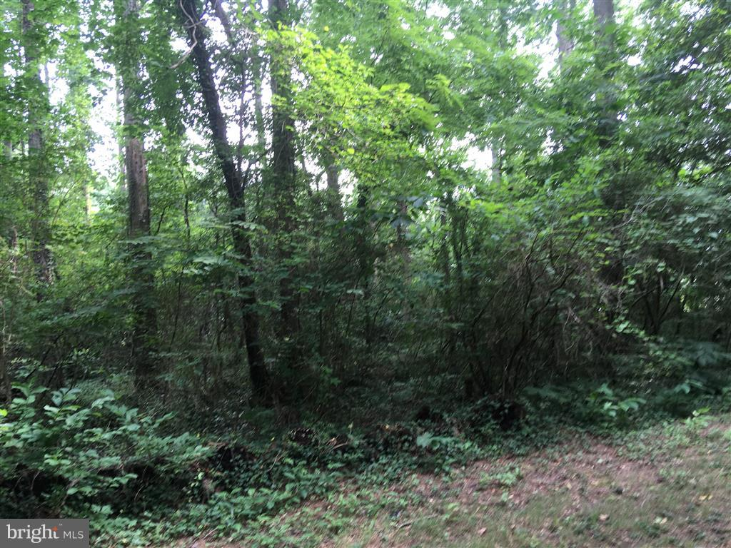Land for Sale at 19361 North Snow Hill Manor Rd Lexington Park, Maryland 20653 United States
