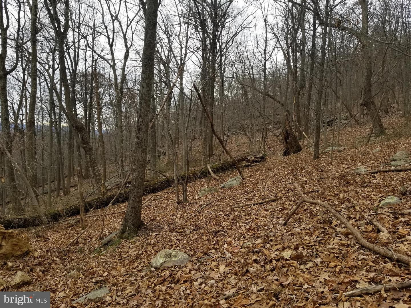 Land for Sale at Lots 5/6 Arran Lane Berkeley Springs, West Virginia 25411 United States
