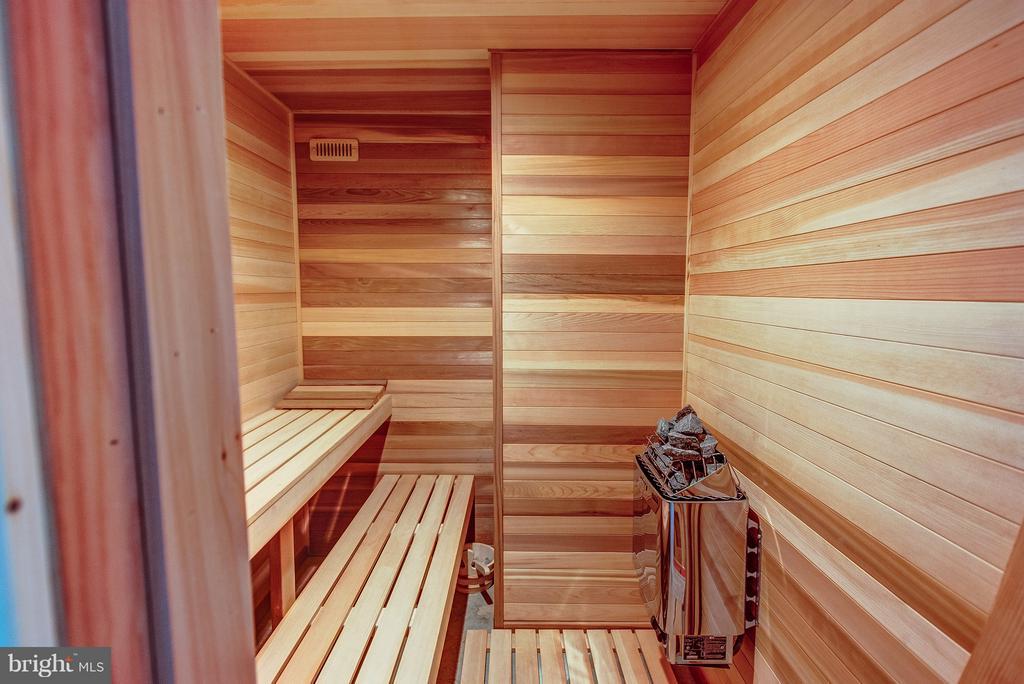 Sauna - 952 TOWLSTON RD, MCLEAN