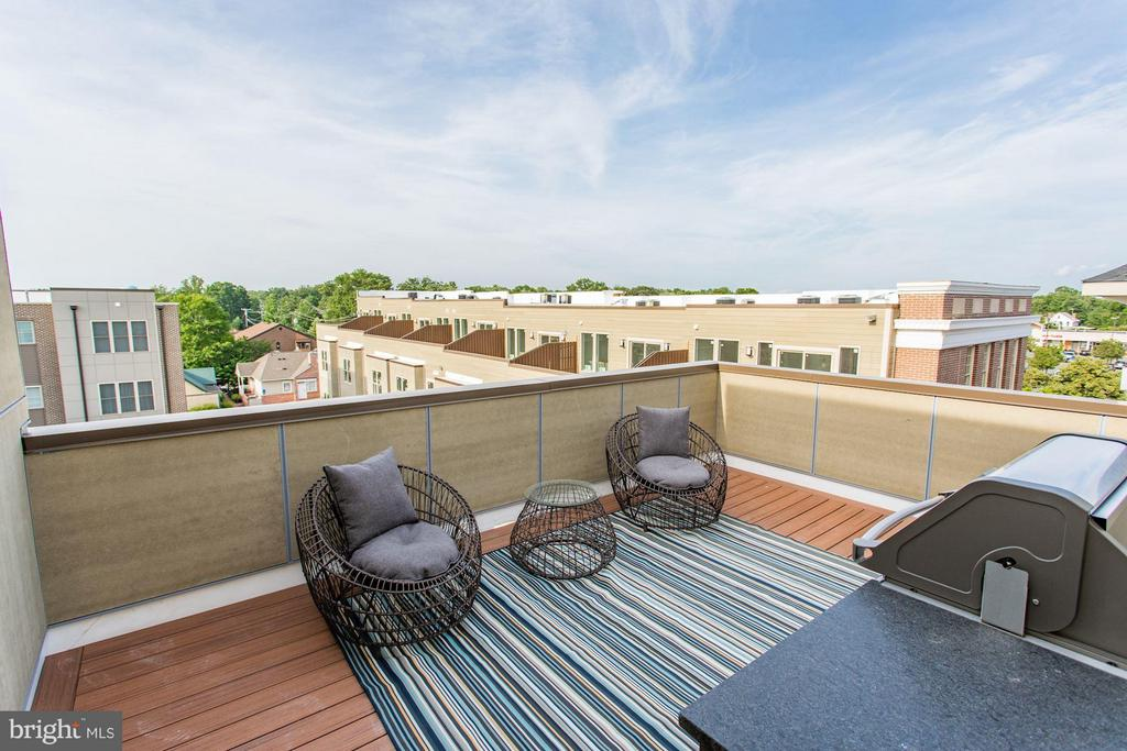 Roof top deck - 702 ELDEN ST, HERNDON