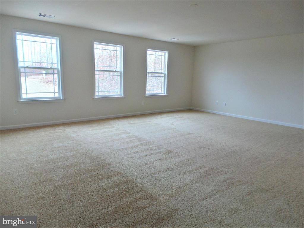 Bedroom (Master) - 315 MOUNT HOPE CHURCH RD, STAFFORD