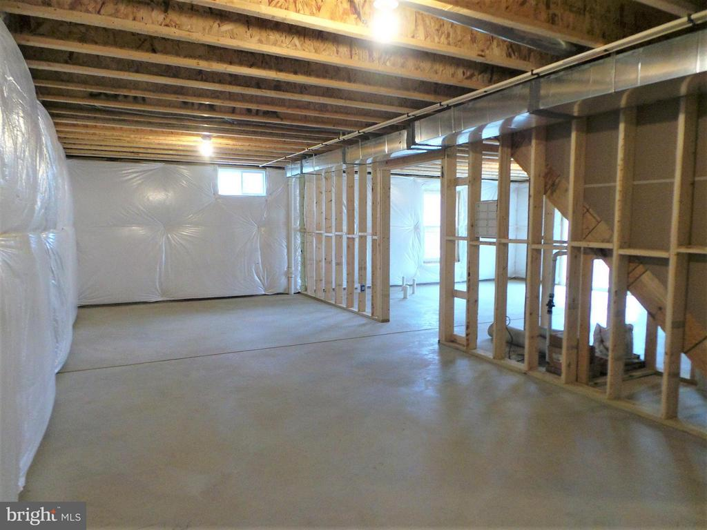 Walkout basement - 315 MOUNT HOPE CHURCH RD, STAFFORD