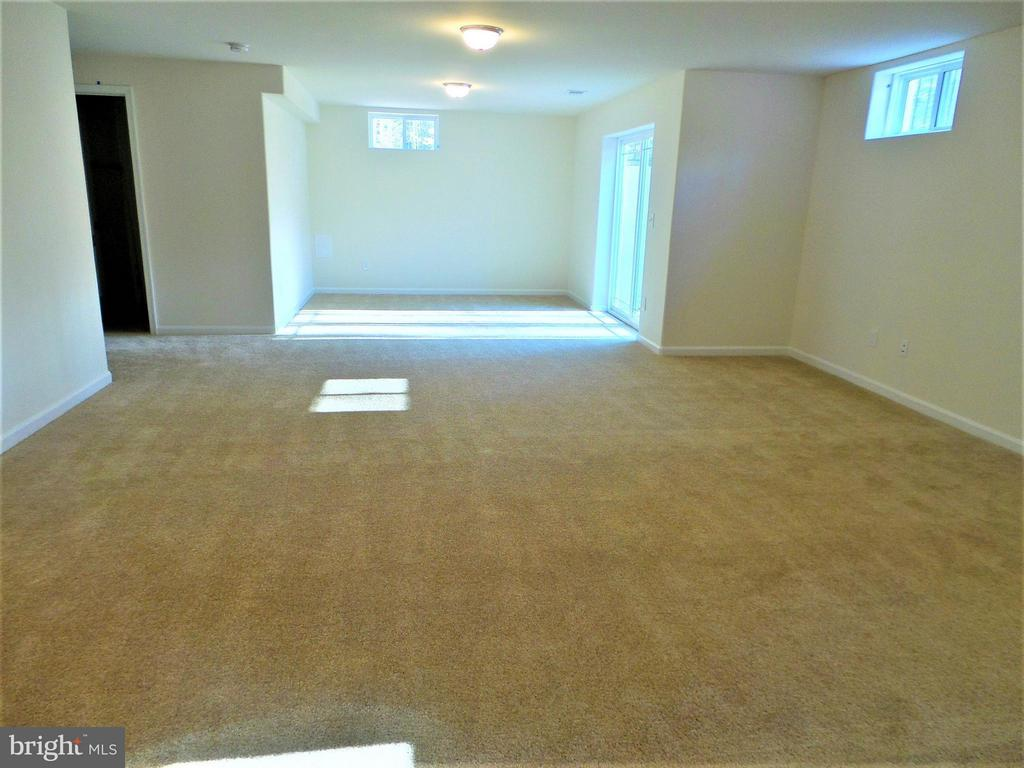 Large rec room with natural light - 231 MOUNT HOPE CHURCH RD, STAFFORD
